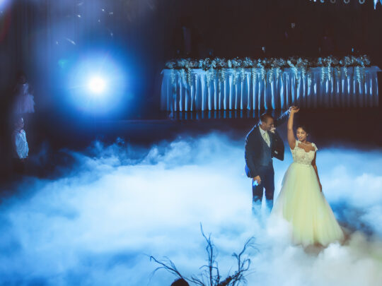 Wedding Videographer Edgecliff